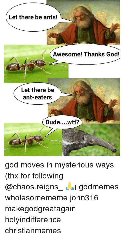 Dude, God, and Memes: Let there be ants!  Awesome! Thanks God!  Let there be  ant-eaters  Dude....wtf? god moves in mysterious ways (thx for following @chaos.reigns_ 🙏) godmemes wholesomememe john316 makegodgreatagain holyindifference christianmemes