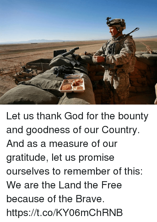 God, Memes, and Brave: Let us thank God for the bounty and goodness of our Country. And as a measure of our gratitude, let us promise ourselves to remember of this: We are the Land the Free because of the Brave. https://t.co/KY06mChRNB