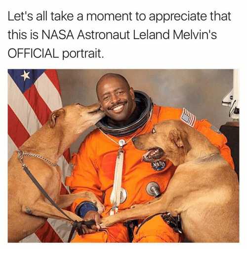Memes, Nasa, and Appreciate: Let's all take a moment to appreciate that  this is NASA Astronaut Leland Melvin's  OFFICIAL portrait.