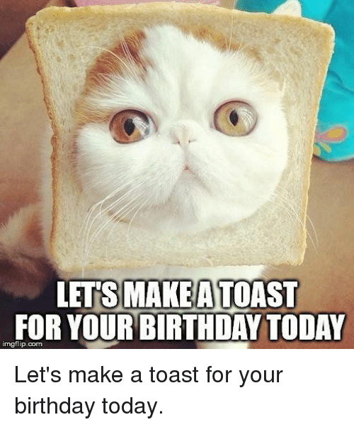Lets Makeatoast For Yourbirthday Today Imgflipcom Lets Make A Toast