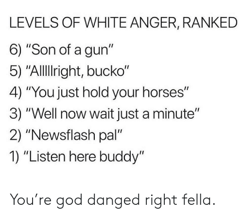 """God, Horses, and White: LEVELS OF WHITE ANGER, RANKED  6) """"Son of a gun""""  5) """"Allright, bucko""""  4) """"You just hold your horses""""  3) """"Well now wait just a minute""""  2) """"Newsflash pal""""  1) """"Listen here buddy"""" You're god danged right fella."""