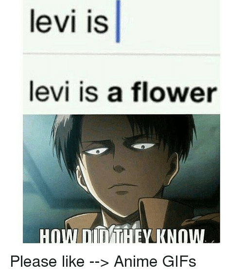 Attack On Titan Corporal Levi Opening Window Slow Epic Youtube