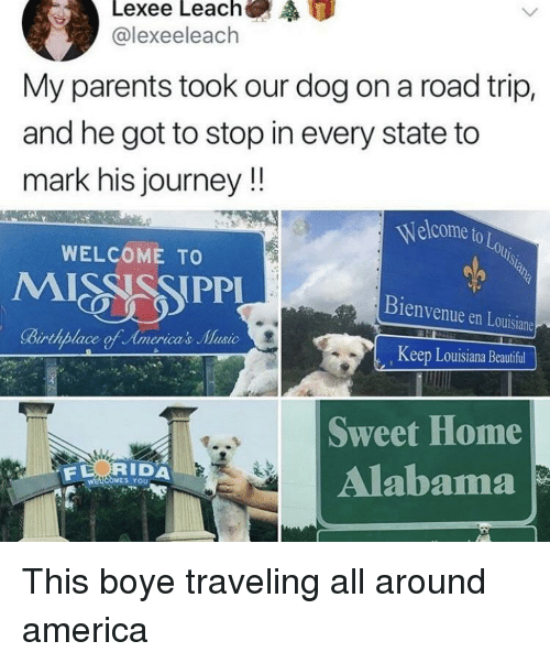 America, Beautiful, and Journey: @lexeeleach  My parents took our dog on a road trip,  and he got to stop in every state to  mark his journey!!  Welcome to  OLo  WELCOME TO  Bienvenue en Louisiane  Keep Louisiana Beautiful  Sweet Home  Alabama  RIDA  S YoU This boye traveling all around america