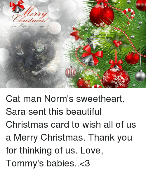 Lezzu Cat Man Norm S Sweetheart Sara Sent This Beautiful
