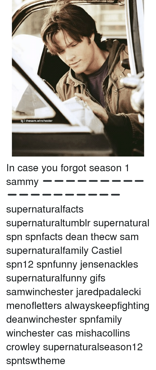 Lg L Thesamwinchester in Case You Forgot Season 1 Sammy