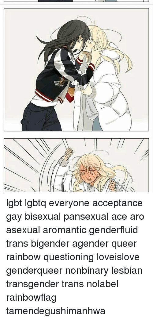 Aromantic pansexual meaning