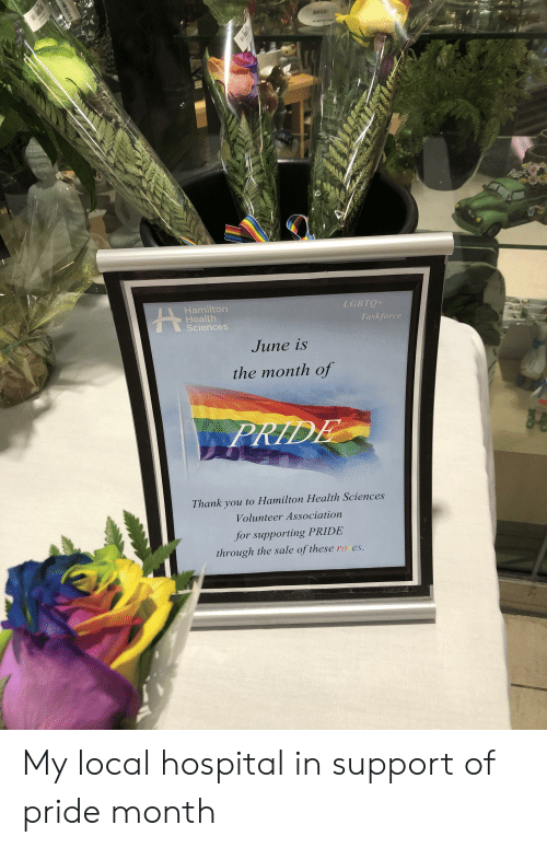 Thank You, Hospital, and Hamilton: LGBTQ+  Hamilton  Health  Sciences  Taskforce  June is  the month of  PRIDE  Thank you to Hamilton Health Sciences  Volunteer Association  for supporting PRIDE  through the sale of these roses. My local hospital in support of pride month