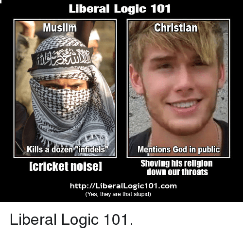 Image result for Liberal Logic:101