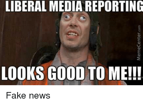 LIBERAL MEDIA REPORTING LOOKS GOOD TO ME!!! Fake News | Fake Meme on on change request meme, billing report meme, bank report meme, report someone meme, time off request meme, address book meme, time sheets meme, i-9 meme, timeclock meme, year-end accounting meme, where's your timesheet meme, entropy meme, finance accounting meme, standard meme, expense reports for dummies, financial report meme, receipt meme, flight plan meme, business report meme, error report meme,