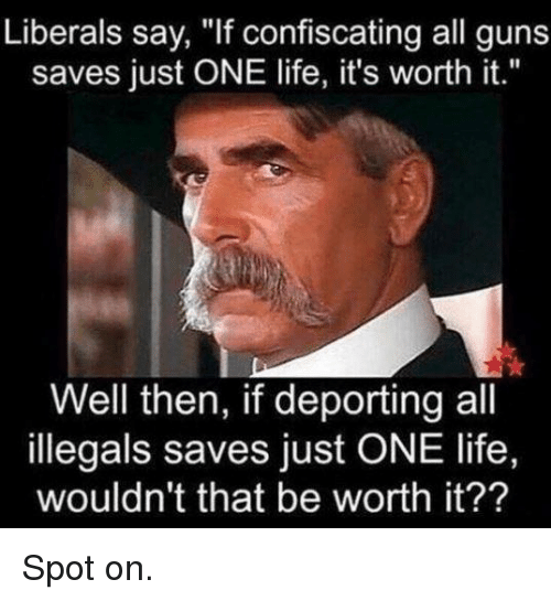 "Guns, Life, and One: Liberals say, ""If confiscating all guns  saves just ONE life, it's worth it.""  Well then, if deporting all  illegals saves just ONE life,  wouldn't that be worth it?? Spot on."