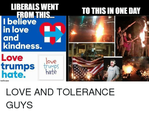 Memes, Liberalism, and 🤖: LIBERALS WENT  FROM THIS  I believe  in love  and  kindness.  Love  love  trumps  trumps  hate.  hate  TO THIS IN ONE DAY LOVE AND TOLERANCE GUYS