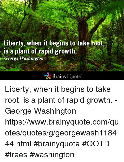 "Memes, George Washington, and Quotes: Liberty, when it begins to take root,  is a plant of rapid growth.  George Washington  ""Z Brainy  Quote Liberty, when it begins to take root, is a plant of rapid growth. - George Washington https://www.brainyquote.com/quotes/quotes/g/georgewash118444.html #brainyquote #QOTD #trees #washington"