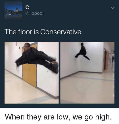Blackpeopletwitter, Funny, and Conservative: @libpool  The floor is Conservative