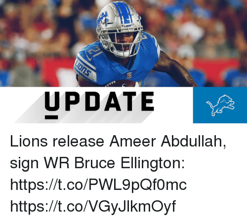 Memes, Lions, and 🤖: LIDIS  UPDATE Lions release Ameer Abdullah, sign WR Bruce Ellington: https://t.co/PWL9pQf0mc https://t.co/VGyJlkmOyf