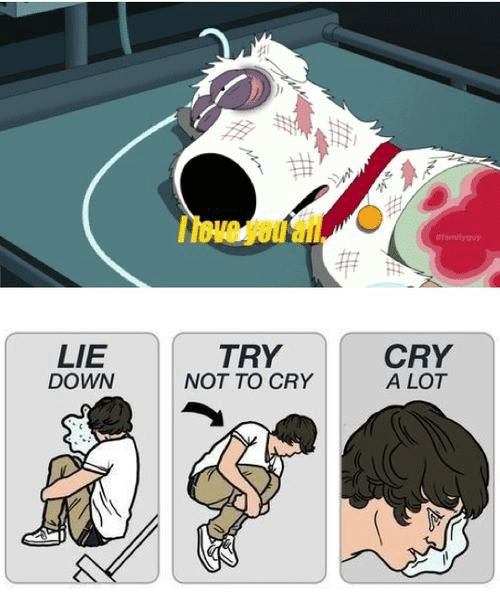 LIE DOWN TRY NOT TO CRY CRY a LOT   Crying Meme on SIZZLE