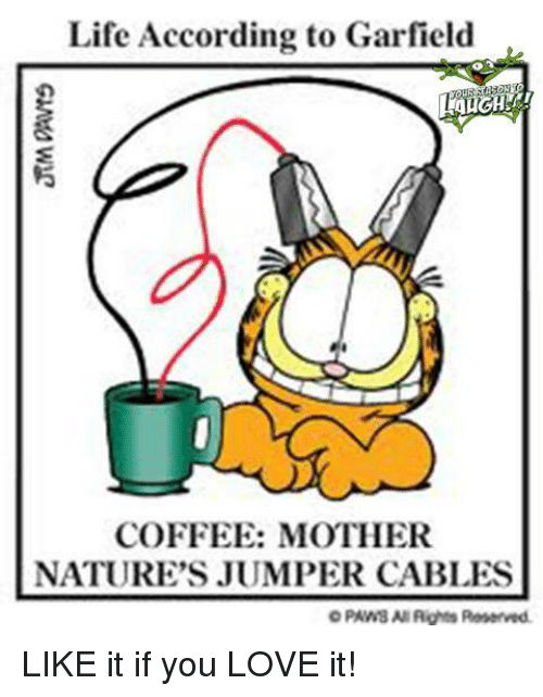Jumper Cables Meme : Life according to garfield coffee mother nature s jumper