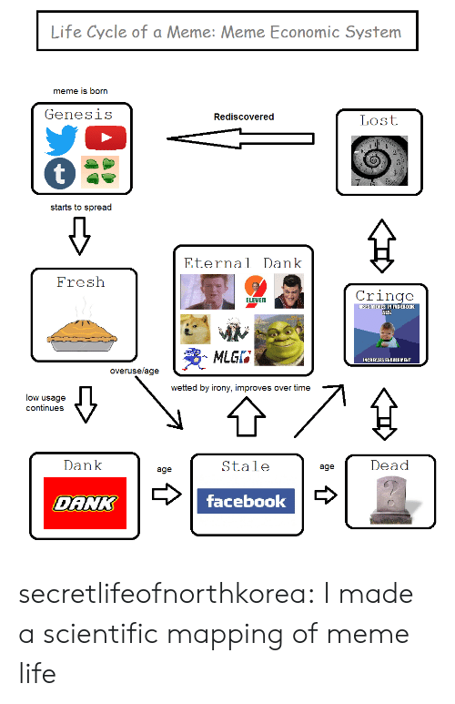 Dank, Fresh, and Life: Life Cycle of a Meme: Meme Economic System  meme is born  Genesis  Rediscovered  Lost  starts to spread  Eternal Dank  Fresh  Cringe  ELEVEN  SESMEMES IN FAGEBOOK  ADS  MLGF  INCREASES ENCACEMENT  overuselage  wetted by irony, improves over time  low usagee  continues  Dank  Stale  Dead  age  age  DANK  facebookv secretlifeofnorthkorea: I made a scientific mapping of meme life