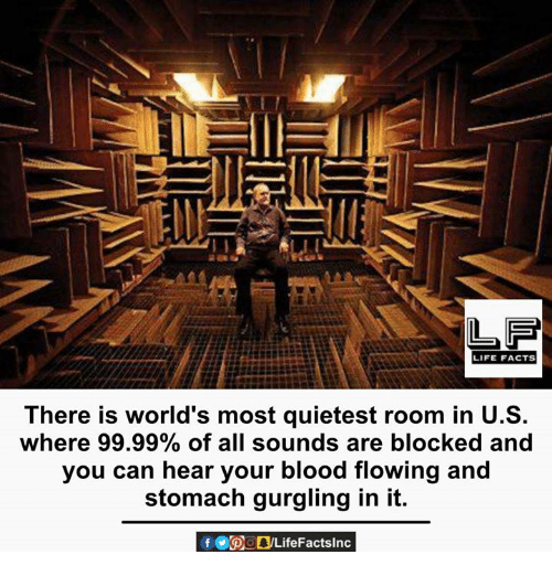 Facts, Life, and Memes: LIFE FACTS  There is world's most quietest room in U.S.  where 99.99% of all sounds are blocked and  you can hear your blood flowing and  stomach gurgling in it.  f POOLifeFactslnc