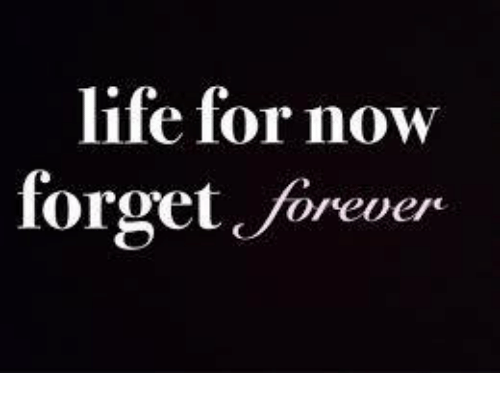 Life For Now Forget Forever Meme On Me Me