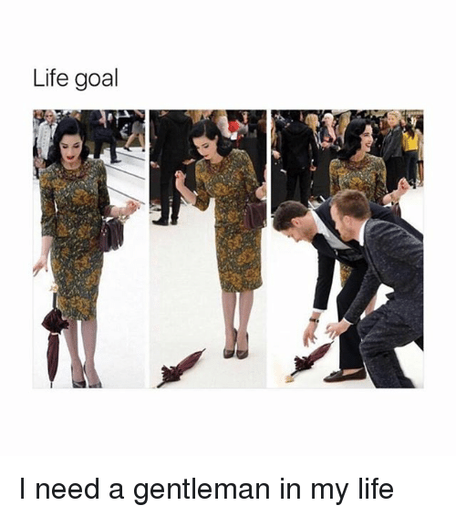 Life, Goal, and Girl Memes: Life goal I need a gentleman in my life