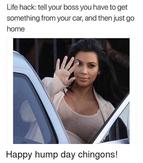 Hump Day, Life, and Memes: Life hack: tell your boss you have to get  something from your car, and then just go  home Happy hump day chingons!