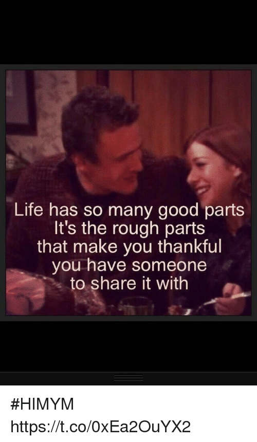 Life, Memes, and Good: Life has so many good parts  It's the rough parts  that make you thankful  you have someone  to share it with #HIMYM https://t.co/0xEa2OuYX2