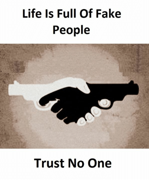 Life Is Full Of Fake People Trust No One Fake Meme On Meme