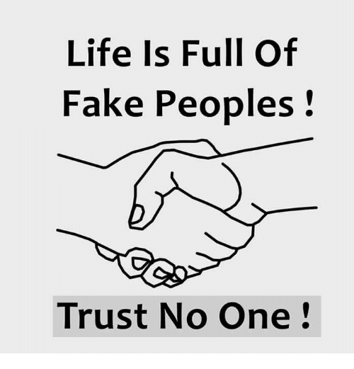 Life Is Full Of Fake Peoples Trust No One Meme On Meme