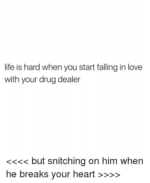 Life Is Hard When You Start Falling In Love With Your Drug Dealer