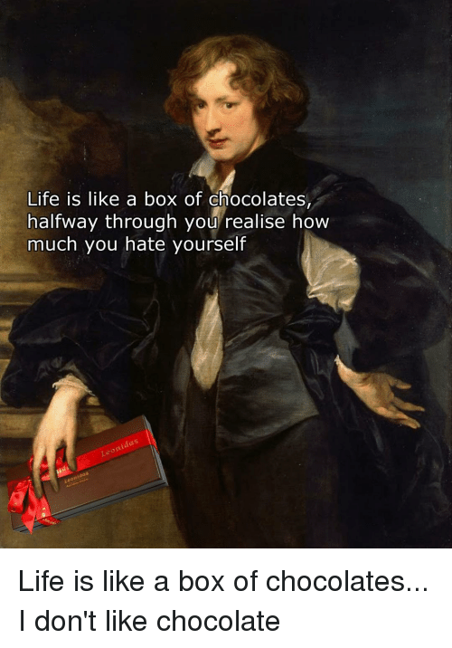 Boxing Life and Chocolate Life is like a box of chocolates halfway  sc 1 st  Me.me & ? 25+ Best Memes About Life Is Like a Box of Chocolate | Life Is ... Aboutintivar.Com