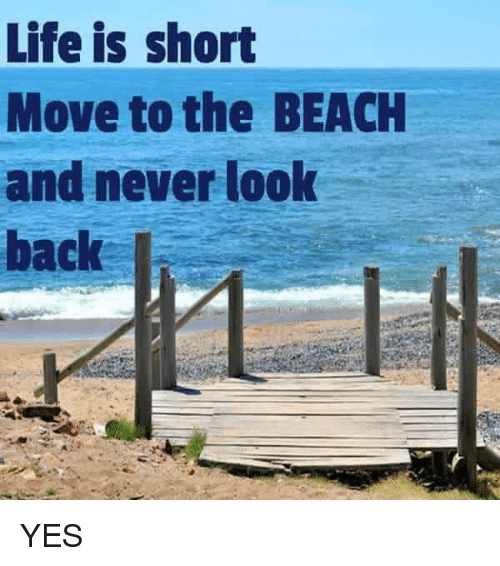 Life Memes And Beach Is Short Move To The Never