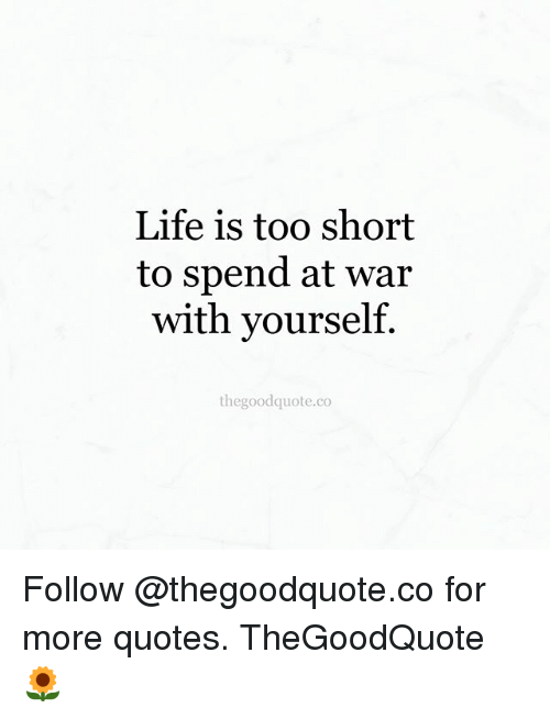 Lovely Life, Memes, And Quotes: Life Is Too Short To Spend At War With