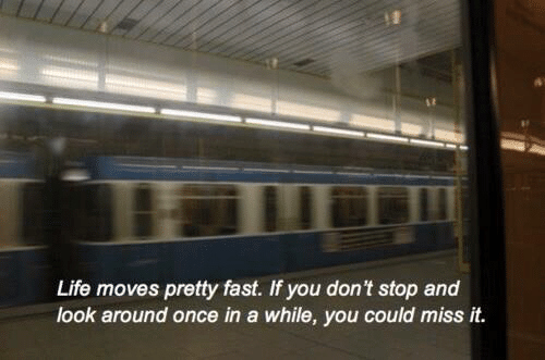 Life, Once, and Fast: Life moves pretty fast. If you don't stop and  look around once in a while, you could miss it.