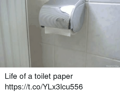 Life, Paper, and Toilet Paper: Life of a toilet paper https://t.co/YLx3lcu556
