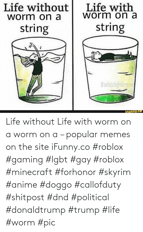 Anime, Lgbt, and Life: Life without Life with worm on a worm on a – popular memes on the site iFunny.co #roblox #gaming #lgbt #gay #roblox #minecraft #forhonor #skyrim #anime #doggo #callofduty #shitpost #dnd #political #donaldtrump #trump #life #worm #pic