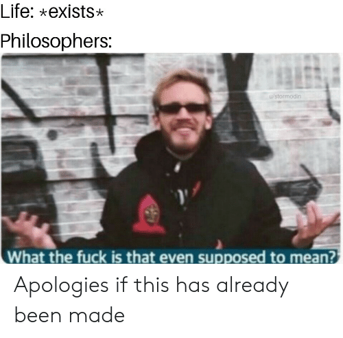 Life, Fuck, and Mean: Life: xexists*  Philosophers:  u/stormodin  What the fuck is that even supposed to mean? Apologies if this has already been made