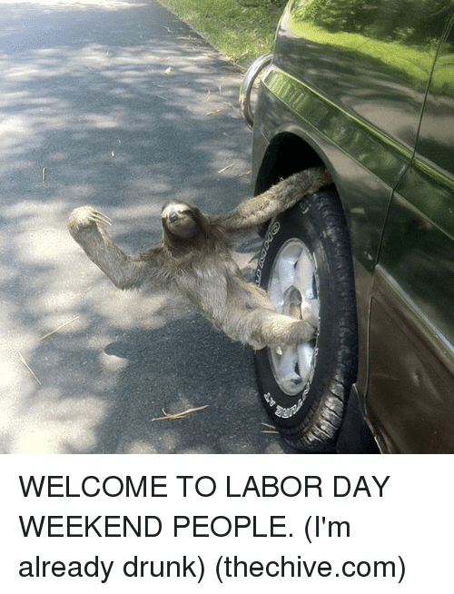 Memes, 🤖, and Weekend: lifi] WELCOME TO LABOR DAY WEEKEND PEOPLE. (I'm already drunk) (thechive.com)