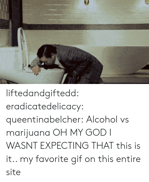 Gif, God, and Oh My God: liftedandgiftedd:  eradicatedelicacy:  queentinabelcher:  Alcohol vs marijuana  OH MY GOD I WASNT EXPECTING THAT  this is it.. my favorite gif on this entire site