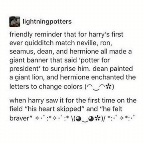 Hermione Memes And Giant Lightningpotters Friendly Reminder That For Harrys First Ever Quidditch