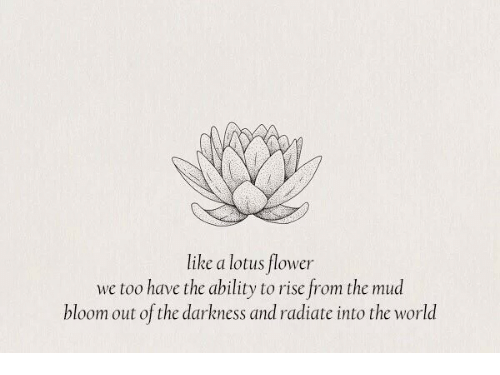 Like A Lotus Flower We Too Have The Ability To Rise From The Mud