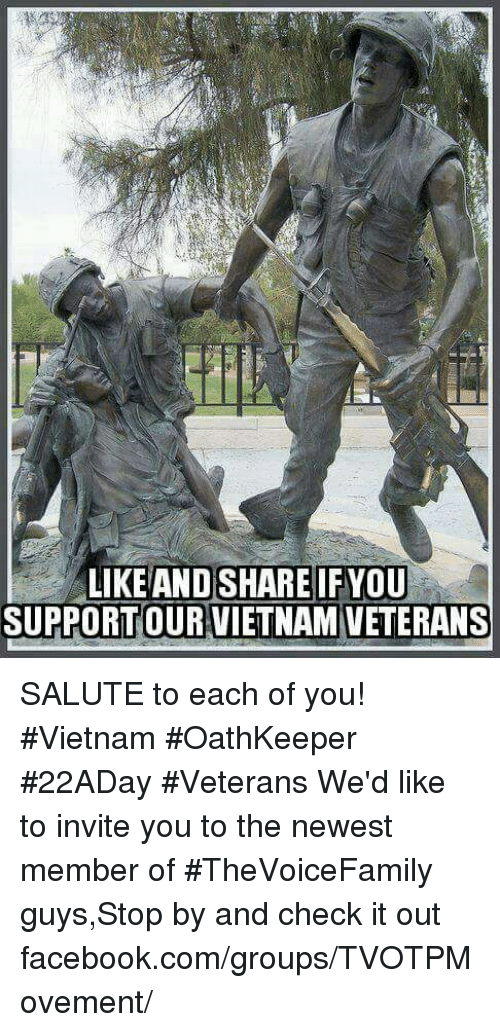 like-and-share-ifyou-support-our-vietnam-veterans-salute-to-17343204.png 38c6f38f2