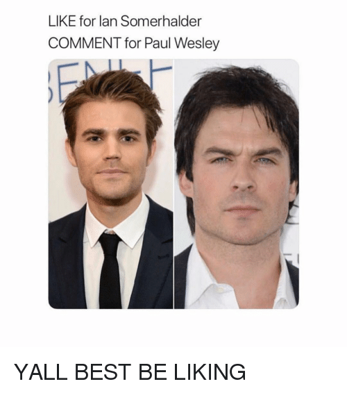 Best, Girl Memes, and Paul: LIKE for lan Somerhalder  COMMENT for Paul Wesley YALL BEST BE LIKING
