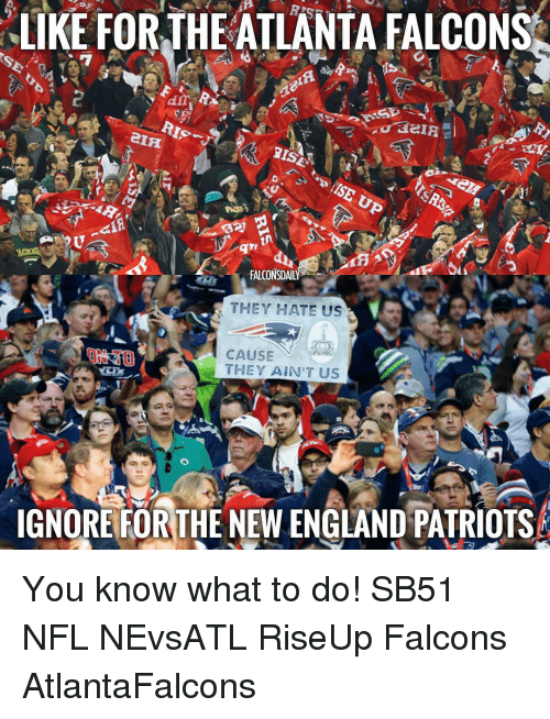 Memes, New England Patriots, and 🤖: LIKE FOR THE ATLANTA FALCONS  era  RIS  EAR  FALCONSDAILY  THEY HATE US  CAUSE  THEY AIN'T US  IGNORE FOR THE NEW ENGLAND PATRIOTS You know what to do! SB51 NFL NEvsATL RiseUp Falcons AtlantaFalcons