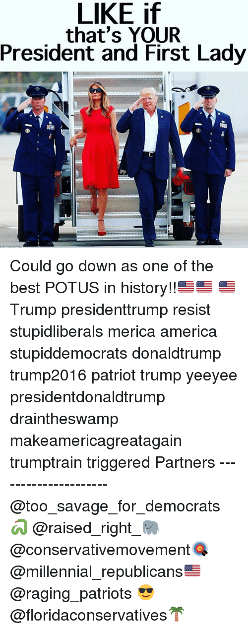 America, Memes, and Patriotic: LIKE if  that's YOUR  President and First Lady Could go down as one of the best POTUS in history!!🇺🇸🇺🇸 🇺🇸 Trump presidenttrump resist stupidliberals merica america stupiddemocrats donaldtrump trump2016 patriot trump yeeyee presidentdonaldtrump draintheswamp makeamericagreatagain trumptrain triggered Partners --------------------- @too_savage_for_democrats🐍 @raised_right_🐘 @conservativemovement🎯 @millennial_republicans🇺🇸 @raging_patriots 😎 @floridaconservatives🌴