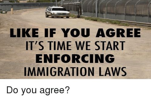 Memes, 🤖, and Enforce-Immigration-Laws: LIKE IF YOU AGREE  IT'S TIME WE START  ENFORCING  IMMIGRATION LAWS Do you agree?