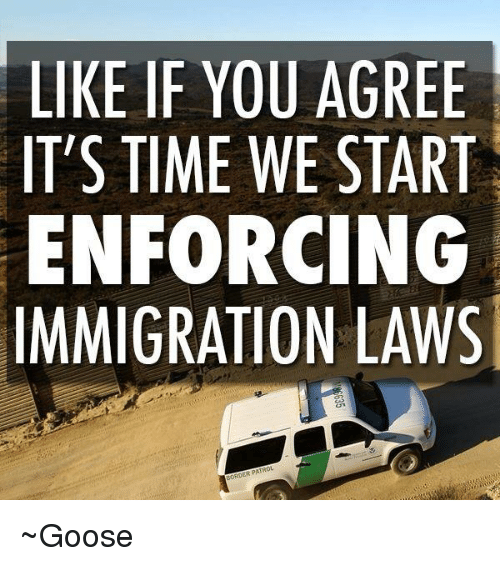 Immigration, Time, and Conservative: LIKE IF YOU AGREE  IT'S TIME WE START  ENFORCING  IMMIGRATION LAWS  ERPA ~Goose