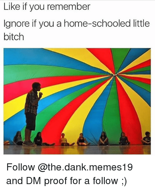 Bitch, Dank, and Home: Like if you remember  Ignore if you a home-schooled little  bitch Follow @the.dank.memes19 and DM proof for a follow ;)