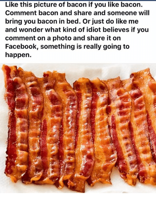 Pictures Of Bacon