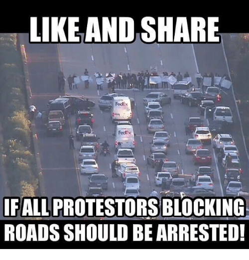 Memes, 🤖, and Share: LIKEAND SHARE  fodix  IFALL PROTESTORS BLOCKING  ROADS SHOULD BE ARRESTED