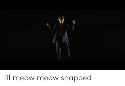 Snapped, Meow, and Lil: lil meow meow snapped